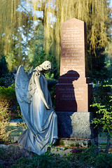 (melquiades1898) Tags: friedhof film cemetery angel analog 35mm germany hessen 200asa contax g2 analogue engel darmstadt entwicklung alterfriedhof contaxg2 tetenal kleinbild selbstentwickelt farbfilm c41kit carlzeisssonnar2890 dmparadies paradiesuniversal tetenalcolortecc41negativkitrapid