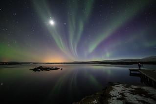 Norðurljós/Northern lights/Aurora borealis (CV0A0976)