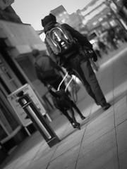 Take me home (Pebbleheed) Tags: street dog home minolta blind streetphotography guidedog takemehome panasonicgx1