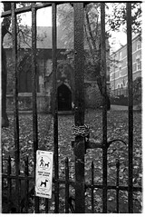chained (jj birder) Tags: york autumn blackandwhite bw film fog 35mm kodak tmax yorkshire contax tmax400 aria 2012 micklegate