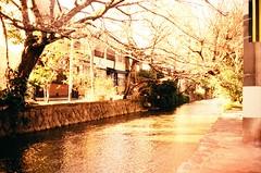 A Japanese picture - Kiya-machi Dori (romuleald) Tags: film analog kyoto fuji velvia chrome electro 100 35 dori yashica argentique kiyamachi invers reverser