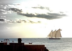 Setting out for a sail (s.s.minnow) Tags: sunset boat sail keywest schooner mallorysquare sunsetcruise
