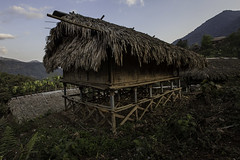 traditional house made of bamboo, tribes nishy, arunachel pradesh (anthony pappone photography) Tags: travel india house canon traditional bamboo hut jungle tribes along arunachelpradesh daporijo nyshi nishy passigat nushitribes nyshytribes