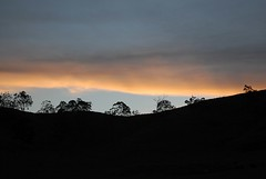over the hill (dustaway) Tags: trees sunset shadow sky silhouette evening australia nsw eveningsky treescape eveninglight northernrivers