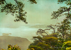 Miyajima misty view (pixellesley) Tags: ocean trees sky texture rain japan misty island miyajima mainland florabella tatot japaninlandsea magicunicornverybest magicunicornmasterpiece