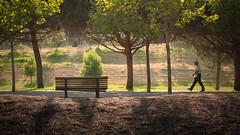 A walk in the park (Telmo Pina e Moura) Tags: almada parquedapaz 50mmf18 sunset park