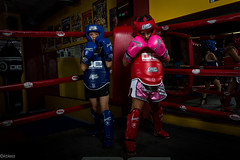 kbless_LittleFighters-32 (kbless photography) Tags: fighters fight peleadores muaythay muay tay barcelona kickbarcelona kick warriors guerreros