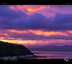 A Perfect Way To Start The Day (tomraven) Tags: sunrise sky clouds sun dawn coast coastal islandbay pencarrow newzealand tomraven pink purple morning aravenimage q32016 lumix gx8
