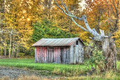Old shed (TDotson) Tags: canon canon70d barn barns shed sheds oldbarn old oldbarns scenicview autumn fallcolors fall country living countryliving countrylife hss sliderssunday