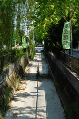 Dry Hakata Drainage Ditch (pokoroto) Tags: dry hakata drainage ditch  fukuokacity fukuoka   kyushu  japan 8   hachigatsu hazuki leafmonth 2016 28 summer august