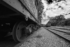 Lost trains (Strange Artifact) Tags: sony a7r black white schwarz weiss zwart wit bw trains gare lost abandoned decay fe 1635mm f4 za oss