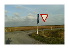 On Route 181. Denmark (2016) (csinnbeck) Tags: rute181 route 181 rute denmark sigma dp2m dp2 merrill foveon husby klit august 2016 road horizon vanishing point middle countryside north sea vesterhavet sign signs parking vigepligt grass green tractor bird parkinglot p stop pole deadpan 30mm 45mm