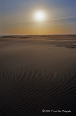 Fin de journee-img485 (hervv30140) Tags: france languedoc coucher soleil mer plage t dune sable vent vague ombre lumire art nature extrieur paysage marin horizon