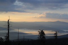 be in my world (Xtraphoto) Tags: fog nebel morgennebel morgen early frh hill hills berge bavaria bayern bayerischer wald aussicht landschaft landscape morgenlicht licht light