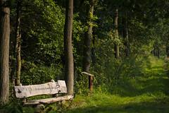 Brabants Landschap (Andrew B47) Tags: brabant brabantslanschap broek kookersdreef nuenen bench