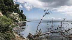 Rgen (Explored) (Ludo_Jacobs) Tags: ostsee deutschland germany sea coast cliffs kreidefelsen kste landscape nature landschaft natur outdoor europe europa