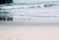 0069211-R1-069-33 (TheTysonChannel) Tags: 35mm nikonfm10 newjersey oceangrove film