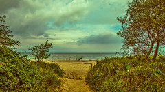 a peaceful place (bocero1977) Tags: grass lines sand landscape nature water germany mood outdoor balticsea light blue beach fineart tree warnemnde foliage moody hdr colors green atmosphere sea sky clouds