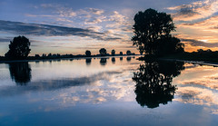 Through the mirror of my mind (Ingeborg Ruyken) Tags: 2016 500pxs empel maas meuse bomen dawn dropbox flickr morning natuurfotografie ochtend river rivier summer sunrise trees water zomer zonsopkomst