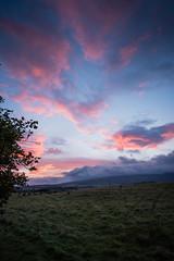 Sunrise (Ian D) Tags: fujixt2 finnichglen devilspulpit scotland stirlingshire fuji steps trees sun sunrise fujifilm clouds