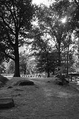 X100-09-12-15-417-2 (a.cadore) Tags: fujifilmx100 fujifilm x100 nosort 23mm35mmequivalent newyorkcity nyc candid uptown uws blackandwhite bw landscape