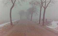 dutch winter (73) (bertknot) Tags: winter dutchwinter dewinter winterinholland winterinthenetherlands hollandsewinter winterinnederlanddutchwinter
