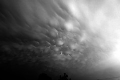 052606 - Awesome Nebraska Mammatus B&W (NebraskaSC) Tags: county sky cloud storm net weather clouds training warning photography buffalo nebraska day head watch may 2006 chase damage thunderstorm kearney thunder severe thunderhead severeweather cumulonimbus mammatus chasers reports spotter 26may may26 buffalocounty cumulonimbusmammatus kearneynebraska weatherphotography justclouds weatherphotos weatherphoto nebraskakearney nebraskathunderstorms therebeastormabrewin dalekaminski cloudsstormssunsetssunrises nebraskasc