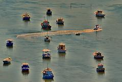 Por entre os barcos... / Among the boats ... (Valcir Siqueira) Tags: sunset seascape cute boats photography bay cool pretty barcos sweet bonito baía belo entardecer