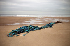 on Warkworth beach (Ray Byrne) Tags: sea beach coast sand rope northumberland northeast warkworth raybyrne byrneout byrneoutcouk webnorthcouk