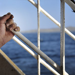 "The Old Hand and the Sea <a style=""margin-left:10px; font-size:0.8em;"" href=""http://www.flickr.com/photos/89335711@N00/8598379804/"" target=""_blank"">@flickr</a>"