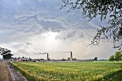 MAK_0470 (Aslam Khan - PK) Tags: storm lightening wheatfields bahawalpur khanewal chiminy