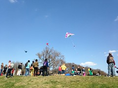 Will You Marry Me Sarai? (Sessions500) Tags: kite festival fun washingtondc districtofcolumbia kites nationalmall blossomkitefestival