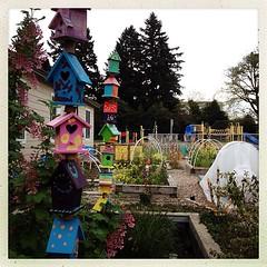 "Children's #garden #children #school #color • <a style=""font-size:0.8em;"" href=""https://www.flickr.com/photos/61640076@N04/8609290057/"" target=""_blank"">View on Flickr</a>"
