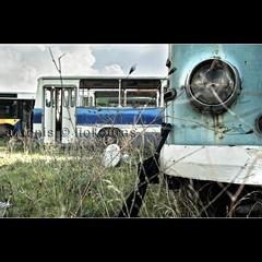 ...old busses... (Antonis Liokouras) Tags: color bus car horizontal composition digital vintage outdoors photography europe industrial transport nobody scene athens retro greece vehicles nostalgia transportation vehicle nikond700