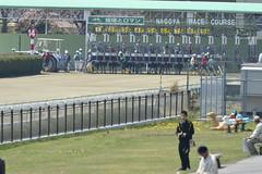 20130405-_DSC5015 (Fomal Haut) Tags: horse japan nikon nagoya 80400mm d4   14teleconverter  d800e