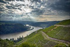 Darum ist es am Rhein so schön ... (Helmut Reichelt) Tags: germany deutschland nikon d200 rhein sonnenstrahlen tal weinberge burgmaus fellen hirzenach viveza2 colorefexpro4 captureone7