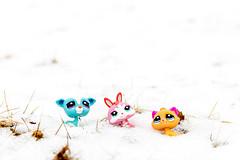 """No more snow, please"" (MikaelWiman) Tags: snow toys se spring sweden creepy karlstad lps värmland djur littlestpetshop fotosondag colorefexpro4 fs130414"