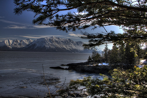 Turnagain Arm View Looking N.E.