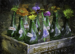 Flowers in Bottles (zuni48) Tags: flowers stilllife painterly texture bottles rustic crate dap dynamicautopainter thesunflowergarden