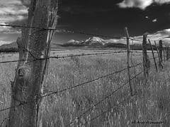 Utah Fence Line (BW) (jamesclinich) Tags: mountains sky clouds fences field landscapes availablelight handheld olympus omd em10 corel paintshoppro topaz denoise adjust clarity detail jamesclinich utah ut blackwhite bweffects monochrome