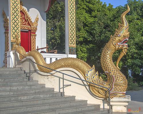 Wat Santiwan Phra Wihan Naga (DTHCM0985)