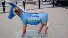 IMG_20160724_163405116 (7beachbum) Tags: nevada nv philly philadelphia donkey dnc democrats democraticparty