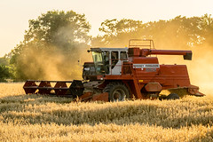 Norfolk Harvesting (Neal_T) Tags: 865 dust farm fuji fujifilm harvest norfolk sunset xt1 combine combineharvester crop farming ferguson field harvesting machine massey masseyferguson norwich uk