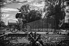 DSC_0569-Edit (airileon) Tags: black white passion award streetlevelphoto