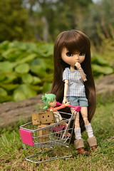 Sam (-gigina-) Tags: sam doll muñeca pullip latte rewigged obitsu yotsuba danbo revoltech amazon cute nikon d3100 50mm