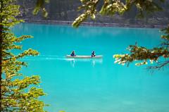 Bow Lake (AmitShah) Tags: banff canada nationalpark