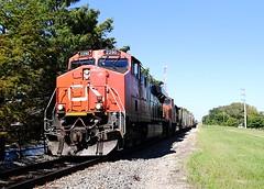 Champaign, IL (Laurence's Pictures) Tags: burlington northern santa fe bnsf mendota train rail railroad railway locomotive engine