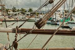 Nautical (gecko47) Tags: ship tallship defender schooner timber rigging hdr rosscreek townsville moorings yachts water texture