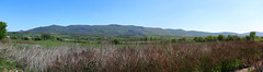 Panorama of the Matra (Majorimi) Tags: canon eos 70d digital color colorful nice hungary mountain panorama green sky view matra