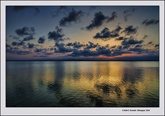 Ocs a l'Albufera 42 (L'Albufera in sunset, 42) (Rafel Ferrandis) Tags: ocs albufera reflex nvols eos5dmkii ef2470mmf28lii nwn